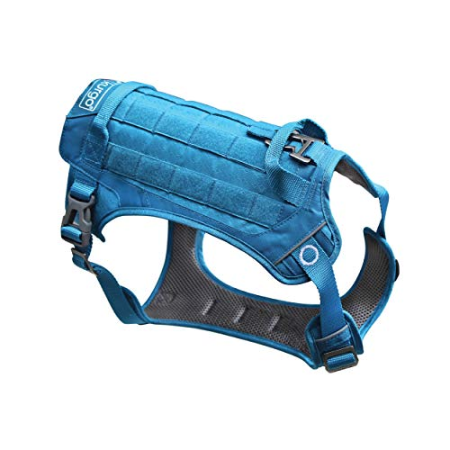 Kurgo RSG County Tactical Dog Harness, MOLLE Vest for Dogs, Service Dog Training Vest, Hiking Harness for Pets, for Small, Medium & Large Dogs, Coastal Blue (Small)