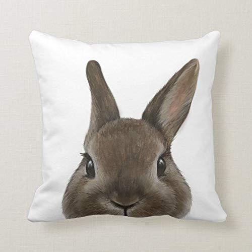 Funda de cojín de 45,7 x 45,7 cm, funda de almohada para sofá, decoración de oficina de Países Bajos, conejo enano