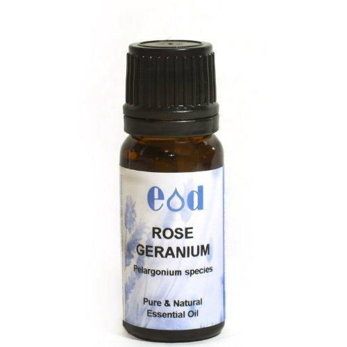 ROSE GERANIUM, ESSENTIAL OIL Pelargonium species 10ml by EOD - Essential Oils Direct