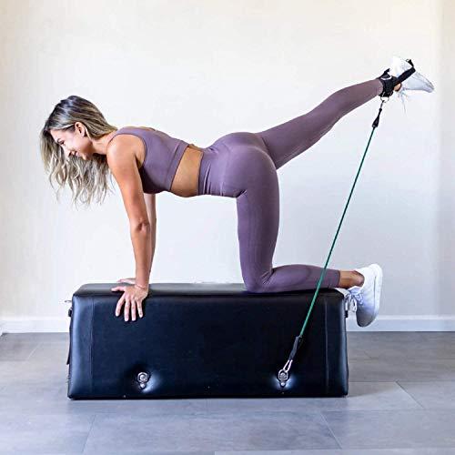 Zeno Workout Bench ONE + Squat Board