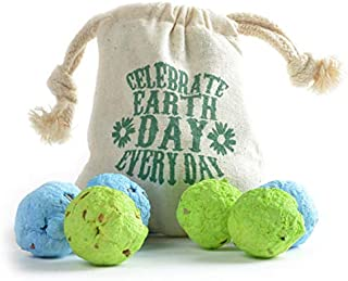 Bloomin Earth Day Wildflower Seed Bomb Bags (6 seed bombs per bag, 3 bags per pack)