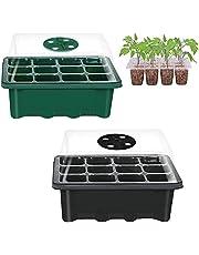 Groeiende Trays Zaailingen 2 Stuks Growing Trays Seedling Plant Groeiende Lade Zaailing Starter Greenhouse Seed Tray Plant Growing Tray met Deksel voor Het Ontkiemen van Zaailingen In de Tuinbouw