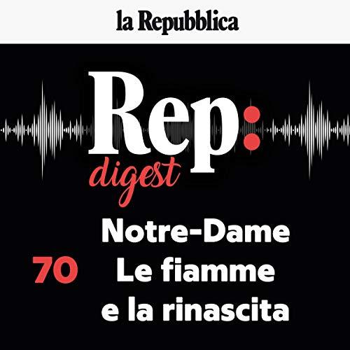 Notre - Dame. Le fiamme e la rinascita copertina