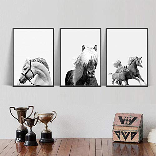 Chihie Nordic Wandkunst Schwarz Und Weiß Tier Poster Pferd Bilder Auf Leinwand Skandinavischen Malerei Pictures 40cm x60cm x3p Kein Rahmen