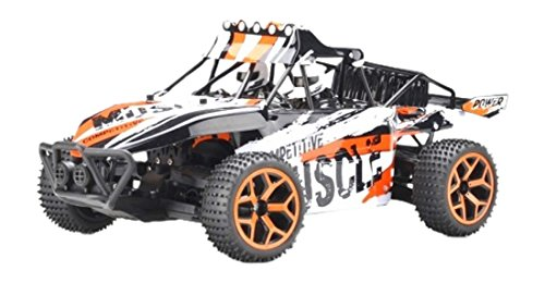 FM FM-G03 – High Speed Sand Buggy Electrics Fino a 50 km/h in Scala 1: 18, Controllo trazione Integrale e 2.4 GHz, Colore: Verde