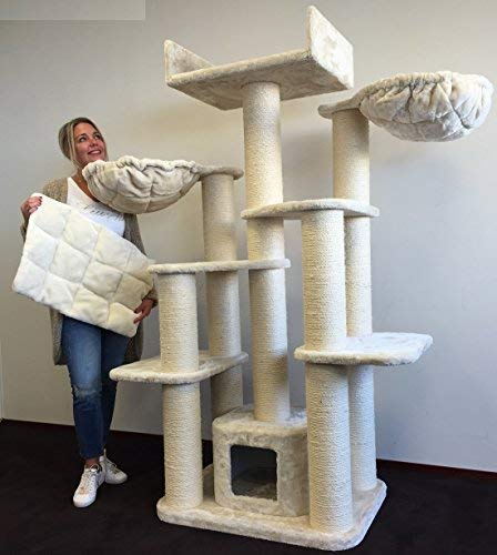 Rascador para gatos grandes Maine Coon Fantasy Crema baratos arbol xxl gato adultos con hamaca gigante sisal muebles escalador torre Árboles rascadores cama cueva repuesto medianos