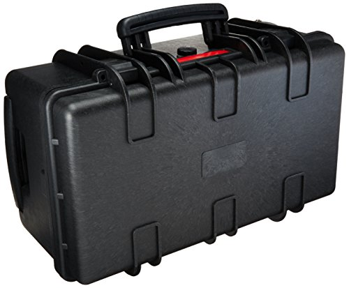 Amazon Basics Large Hard Rolling Camera Case - 22 x 14 x 9 Inches, Black