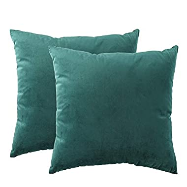 Zishenge Modern Velvet Cushion Cover Super Soft Pillow Cases Square Throw Pillow Cover for Bed 18 x 18 Inch 2 pcs (Blackish Green)