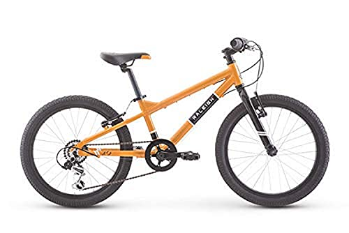 Raleigh Bikes Rowdy 20 Kids Bike for Boys Youth 4-9 Years Old, Green