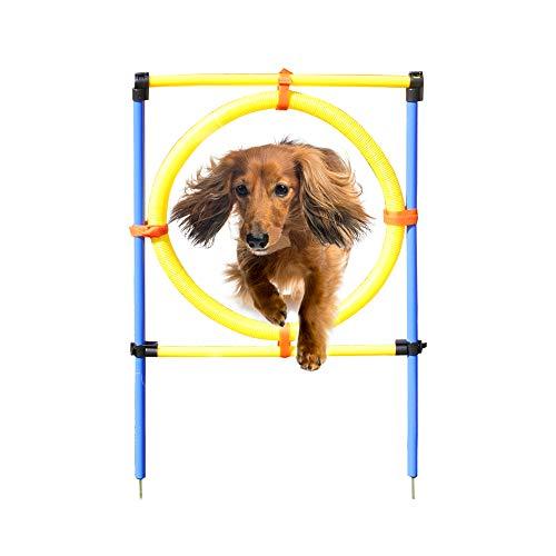 Eono by Amazon Ausrüstung für Agility-Training für Hunde, Anfänger-Set, Sprungreifen, Hindernisstange, Hundespielzeug für Draußen
