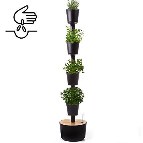 Citysens- Potager d'intérieur avec arrosage auto et graines de plantes aromatiques, noir, 4 pots