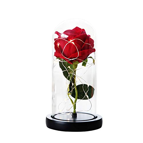 Shimkong Artificial Rose Fake Flowers with Glass Dome and LED Birthday Valentine's Day Anniversary Present Gift for Mom Lover Parents Friends with Battery