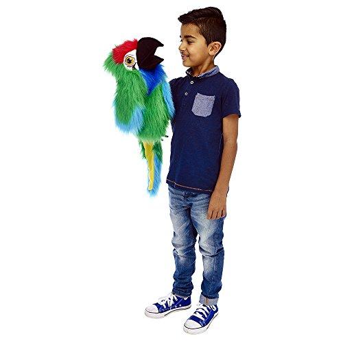 The Puppet Company Grandes pájaros Guacamayo Militar Marioneta de Mano