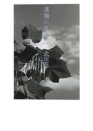 道端に光線 (2011-09-25T00:00:00.000)