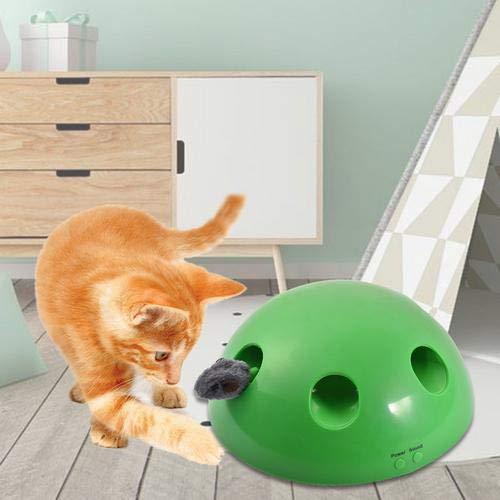 Gato Juguete,Divertido Juego del Gatito,Mascota Interactive Cat Juego, Mascota Captura Ratón, Movimiento Cat Toy, Persecución de Movimiento de ratón,Plumas y Ratones Intercambiables