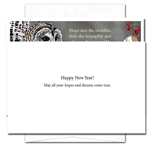 Hope: New Year Holiday Cards - box of 10 cards & envelopes Photo #2