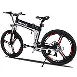 Winice 26' bicicletta elettrica, 6V/8Ah batteria elettrica Commuter Bike, 250W Brushless Motor...