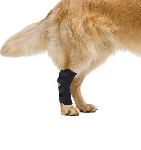 YAODHAOD Soporte para pierna de perro, envoltura para articulaciones de perro protege las heridas mientras curan, las heridas curan y previene lesiones, pérdida de estabilidad causada por artritis (M)