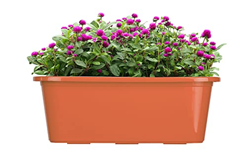 BigDean Blumenkasten 2er Set für den Balkon - 40 cm - Balkonkasten für Blumen - Made in Europe - Pflanzkasten terrakotta aus Kunststoff - Blumenkästen