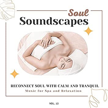 Soul Soundscapes, V12 - Reconnect Soul With Calm And Tranquil Music For Spa And Relaxation