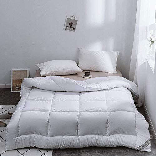 Gasgff Premium de Luxe Daunendecke,Single Duvet Winterdecke Bettwäschekern Kühle Bettdecke Bettdecke Winter Warme Bettdecke-B_145 x 215 cm - 2,5 kg,daunendecke 155x220 90% daunen