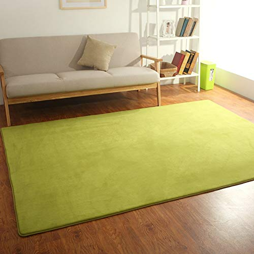 HIGHKAS Soft Rug,Fluffy Area Rugs,Modern Carpet,Tatami Mat Floor mats Washable Non-Slip Living Room Home Bedroom Floor Carpet-A 140x200cm(55x79inch)