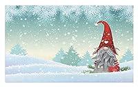 Amxxy 冬の雪の上に立つGnomeフィンランドのクリスマステーマソフトクッション滑り止め玄関マットバスラグクリエイティブデザイン素敵な家の装飾屋内と屋外の玄関マットバスルームマット15.7x23.6in
