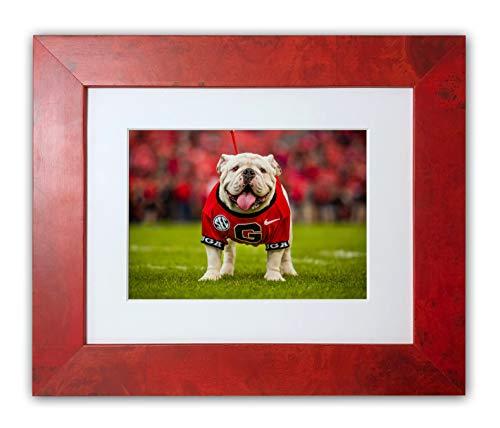"UGA Georgia Bulldogs: Framed Photo Picture Print - UGA X Football Mascot - University of Georgia Art (Medium/Large: 12""x18"", Limited Edition) image"