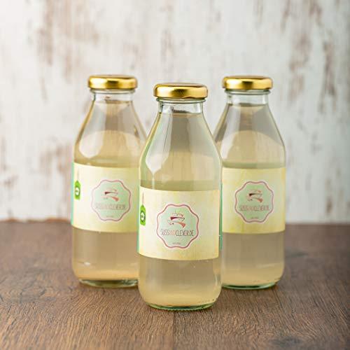süssundclever.de® Bio King Kokoswasser   natur   6 x 350ml im Glas   plastikfrei und ökologisch-nachhaltig abgepackt