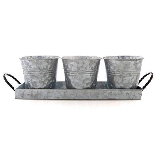 Bison Home Goods Blumentöpfe und Tablett (Vintage), 3 Eimer mit gedrehten Metallgriffen, Fensterbank-Pflanzgefäß, Sukkulenten, Kräuter, Kunst und Handwerk - Bauernhaus Dekor & Küche Organizer