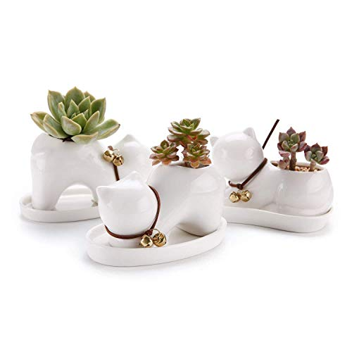 T4U Cat Planter Animal Succulent Pot Ceramic Cute Small Plant Pot - White Porcelain Succulents Holder Cactus Flower Container Home Office Decoration with Tray - Pack of 3
