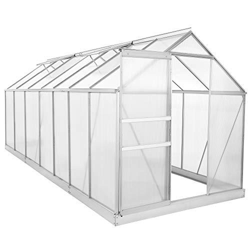 Zelsius Aluminium Gewächshaus für den Garten | inklusive Fundament | 430 x 190 cm | 6 mm Platten | Vielseitig nutzbar als Treibhaus, Tomatenhaus, Frühbeet und Pflanzenhaus