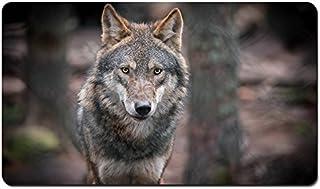 灰色オオカミ、捕食者、肖像画、ボケ味 パターンカスタムの マウスパッド 動物 デスクマット 大 (60cmx35cm)