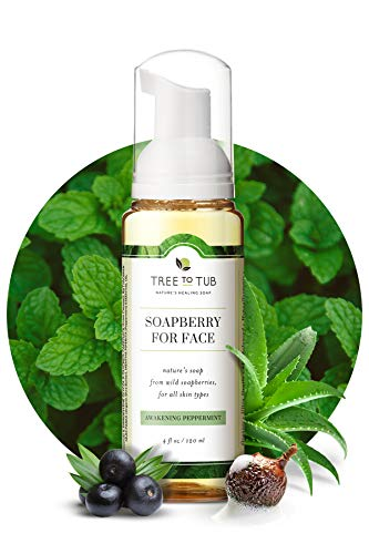 Gentle Face Wash for Oily Skin by Tree To Tub - pH 5.5 Balanced Foaming Cleanser for Sensitive Skin – Women and Mens Face Wash from Soapberries 4 oz
