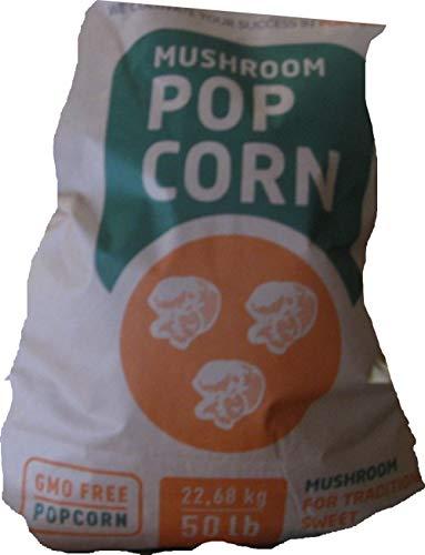Mais Popcorn Kino Popcorn (5 Kg)