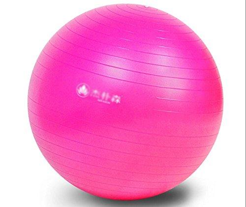 Wly&Home Gymnastikball - Professionelle Sportgeräte Explosionsgeschützte Test-Fußpumpe - Unterstützt 1200 Lbs - Beinhaltet Training Guide Access - 55Cm / 65Cm Balance Ball,Pink,75Cm