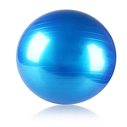 YSCYLY BalóN De Equilibrio,Bola táctil para niños 55cm / 65cm / 75cm / 85cm,para Mantener El Equilibrio FíSico Y La Fuerza del NúCleo