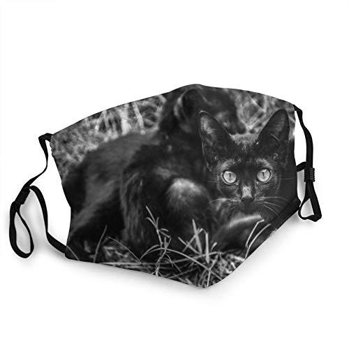 Cat Mother Protecting Your Baby Black Face M-A-S-K Bandanas de cara lavable con bolsillo para la cara pasamontañas Tela reutilizable M-A-S-Ks ajustable con filtro