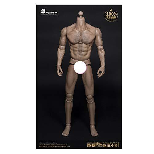 1/6 Männlicher Soldat Body Muscle Body Joint Beweglich Geeignet Für Dress Up HT VERYCOOL TTL PHICEN TBLeague (B)