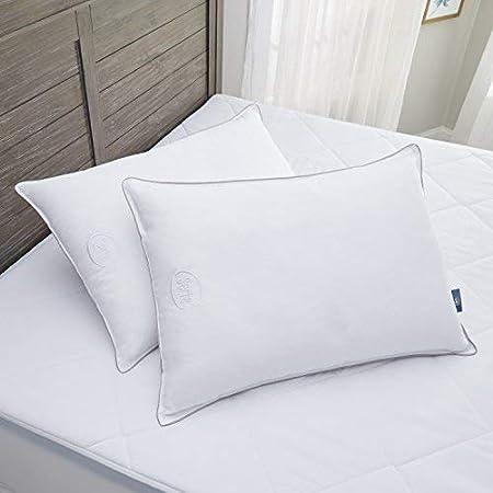 serta perfect sleeper down illusion bed