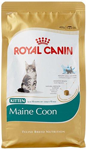 Royal Canin kattenvoer Feline Kitten Maine Coon 36, 400 g, 2-pack (2 x 400 g)