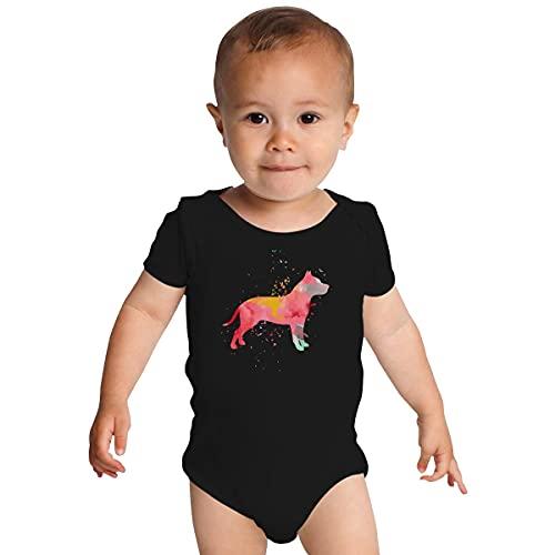 Huang Pitbull - Mono de bebé de moda minimalista colorido