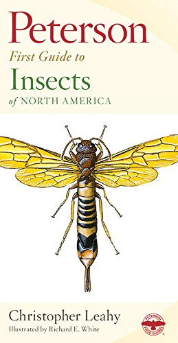 Peterson First Guide to Insects of North America