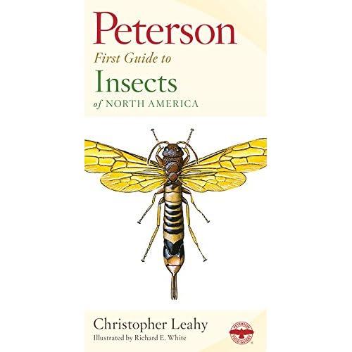 Insect Identification: Amazon com