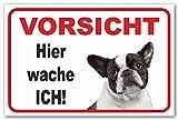 Französische Bulldogge - Hier wache ich - (15x20cm) thumbnail