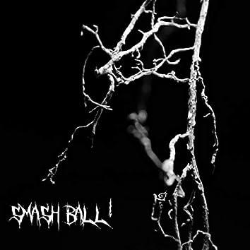 Smash Ball!