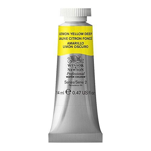 Winsor & Newton 0105348 Professional Watercolours (fijnste kunstenaars aquarelverf – 14ml tube hoogst mogelijke…