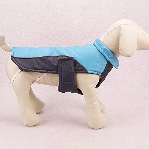 QKEMM Invierno para Mascotas Cachorros Anillo en D con Tira Reflectante Impermeable Abrigo Ropa de Perro Pequeño Chaqueta Chaleco Caliente Azul XXL