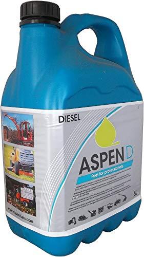 5 Liter ASPEN Diesel bis -32° lange Lagerfähig