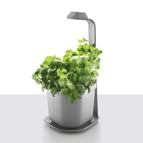 Tregren Genie Pot de fleurs à...